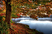 Dan Carmichael - Stunning Autumn Morning...