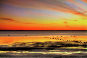 Corolla Prints - Stunning Sunset over Currituck Outer Banks Print by Dan Carmichael