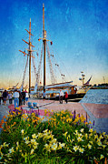 Unicorn Print Prints - STV  Unicorn Tall Ship Print by Carol Toepke