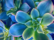 Sharon Beth - Succulent Blue on Green