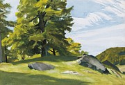 Woods; Shadows; Trees Paintings - Sugar Maple by Edward Hopper