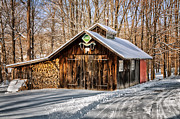 Winter Scenes Rural Scenes Posters - Sugar Shack - Southbury Connecticut Poster by Thomas Schoeller