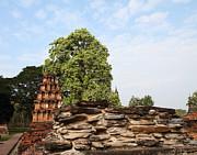 Sukhothai Historical Park - Sukhothai Thailand - 011311 Print by DC Photographer