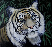 Head Shot Painting Prints - Sumatra Tiger Print by Shirl Theis