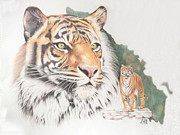 Cat Map Framed Prints - Sumatran Tiger Framed Print by Jill Parry