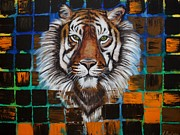 Animal Portraits Prints - Sumatran Tiger Print by Laura Barbosa