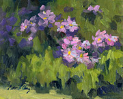 Diane McClary - Summer Asters