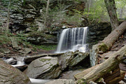 Ledge Photos - Summer At B Reynolds Falls by Gene Walls