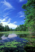 Connecticut Prints - Summer at Breakneck Pond Print by John Burk