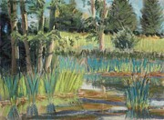 Painted Pastels - Summer at the Pond by Tim  Swagerle