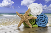 Star Fish Framed Prints - Summer Beach Towels Framed Print by Christopher and Amanda Elwell