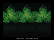 Thomas Born Acrylic Prints - Summer By Thomas Born Acrylic Print by Thomas Born