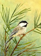 Robert Stump - Summer Chickadee