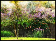 Garden Scene Digital Art Posters - Summer Color Burst Poster by Ellen Cannon
