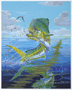 Mahi Mahi Painting Posters - Summer Doldrums Off0015 Poster by Carey Chen