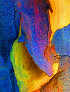 Coloured Bark Posters - Summer Eucalypt Abstract 11 Poster by Margaret Saheed