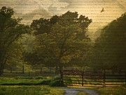Shannon Story Posters - Summer evening Landscape Poster by Shannon Story