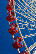 Julie Palencia - Summer Ferris Wheel Fun