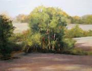 Judy Maurer - Summer Field