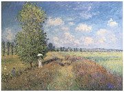 Field Of Flowers Paintings - Summer Field of Poppies by Claude Monet