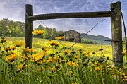 Antique Gate Posters - Summer Fields Poster by Debra and Dave Vanderlaan