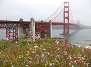 Sausalito Framed Prints - Summer Flowers at the Golden Gate Framed Print by Connie Fox