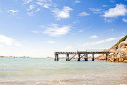 Tim Hester Prints - Summer Jetty Print by Tim Hester