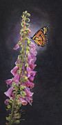 Foxglove Flowers Posters - Summer Love Poster by Gregory Karas