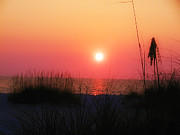 Sunset Photos - Summer Memories by Bill Cannon