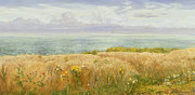 Wales Paintings - Summer on the Cliffs by John Brett