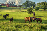 New England Farm Photos - Summer on the farm by Bill  Wakeley