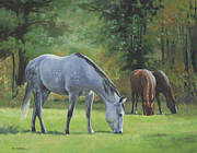Grey Originals - Summer Pasture by Alecia Underhill
