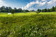 Rural Landscapes Framed Prints - Summer Pastures Framed Print by Bill  Wakeley