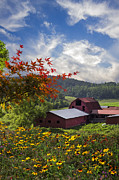 Tennessee Barn Posters - Summer Skies Poster by Debra and Dave Vanderlaan