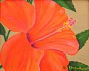 Raleigh Originals - Summer Special - Coral Delight - Hibiscus Flower by Shelia Kempf