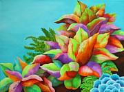Carol Sabo - Summer Succulents