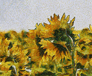 Georgia Fowler - Summer Sunflowers in...