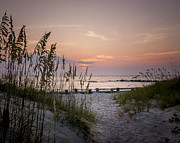 Steve DuPree - Summer Sunrise