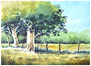 Farm Stand Originals - Summer Trees by Rick Mock