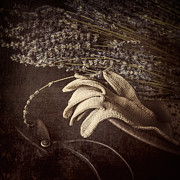 Gloves Metal Prints - Summers Grace Metal Print by Amy Weiss