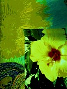 Combination Mixed Media - Sun and Hibiscus Collage by Anne-Elizabeth Whiteway