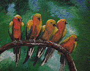 Megan Hughes - Sun Conure Happiness