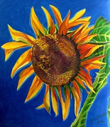 City Garden Drawings - Sun Flower by Grace Liberator