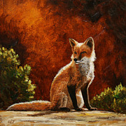 Wild Animals Painting Posters - Sun Fox Poster by Crista Forest
