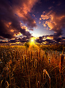 Phil Koch - Sun Gazing