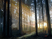 Backdrop Digital Art - Sun Light Rays by James Shepherd