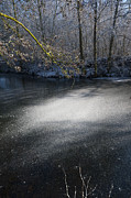Snowy Stream Prints - Sun Light Print by Svetlana Sewell