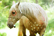 Paint Foal Metal Prints - Sun Lit Metal Print by Lyndsey Warren