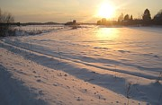 Finland Prints - Sun on Snow Print by Mikael Montonen
