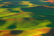 Wheatfields Photo Prints - Sun Painted Hills Print by Reflective Moments  Photography and Digital Art Images